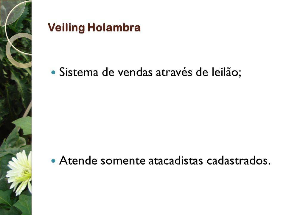 Veiling Holambra Sistema de vendas através de leilão;