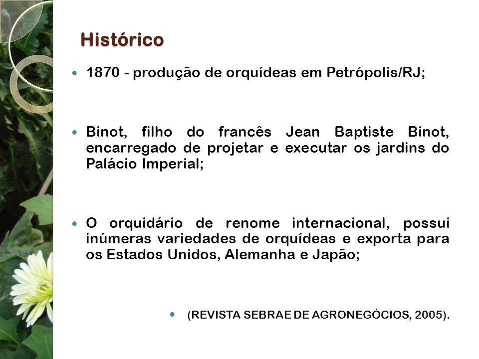 Histórico 1870 - produção de orquídeas em Petrópolis/RJ;