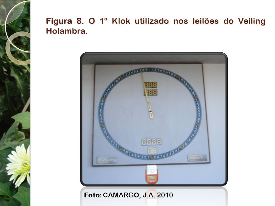 Figura 8. O 1º Klok utilizado nos leilões do Veiling Holambra.