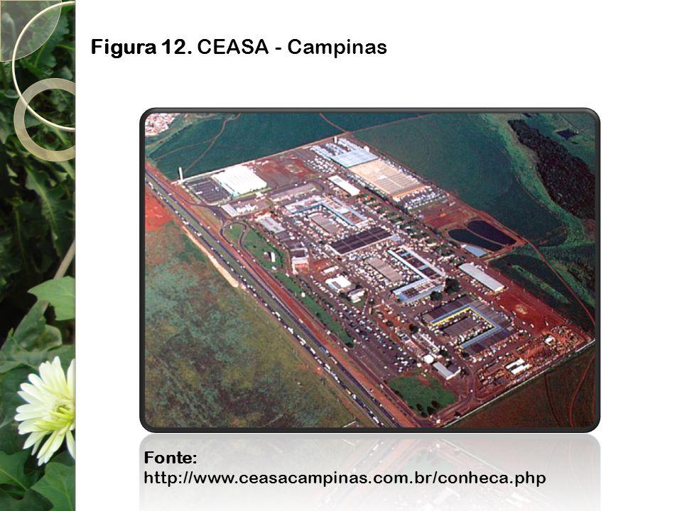 Figura 12. CEASA - Campinas