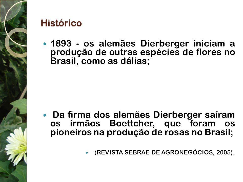 Histórico 1893 - os alemães Dierberger iniciam a produção de outras espécies de flores no Brasil, como as dálias;