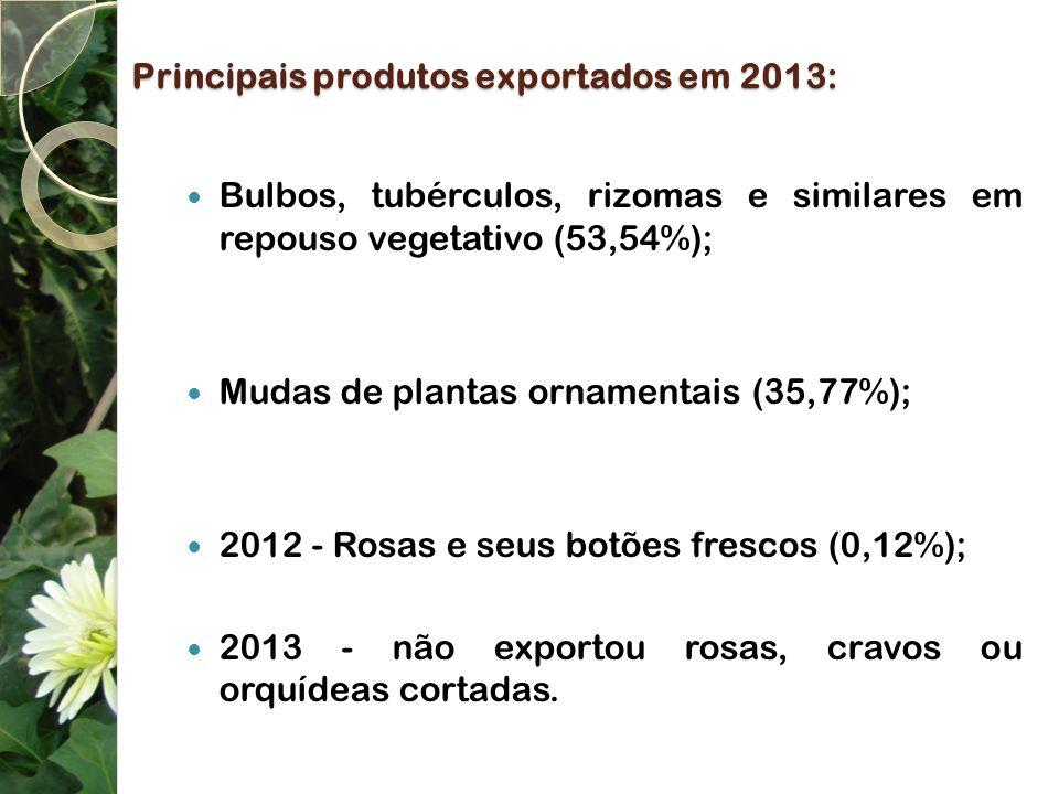 Principais produtos exportados em 2013: