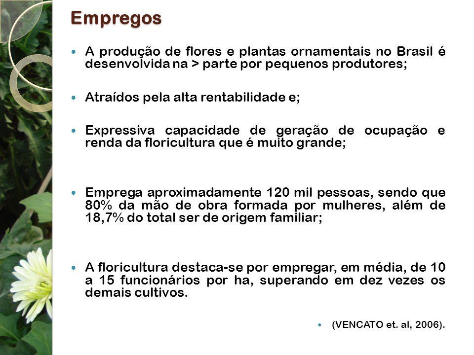 Empregos A produção de flores e plantas ornamentais no Brasil é desenvolvida na > parte por pequenos produtores;