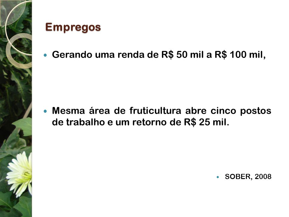 Empregos Gerando uma renda de R$ 50 mil a R$ 100 mil,