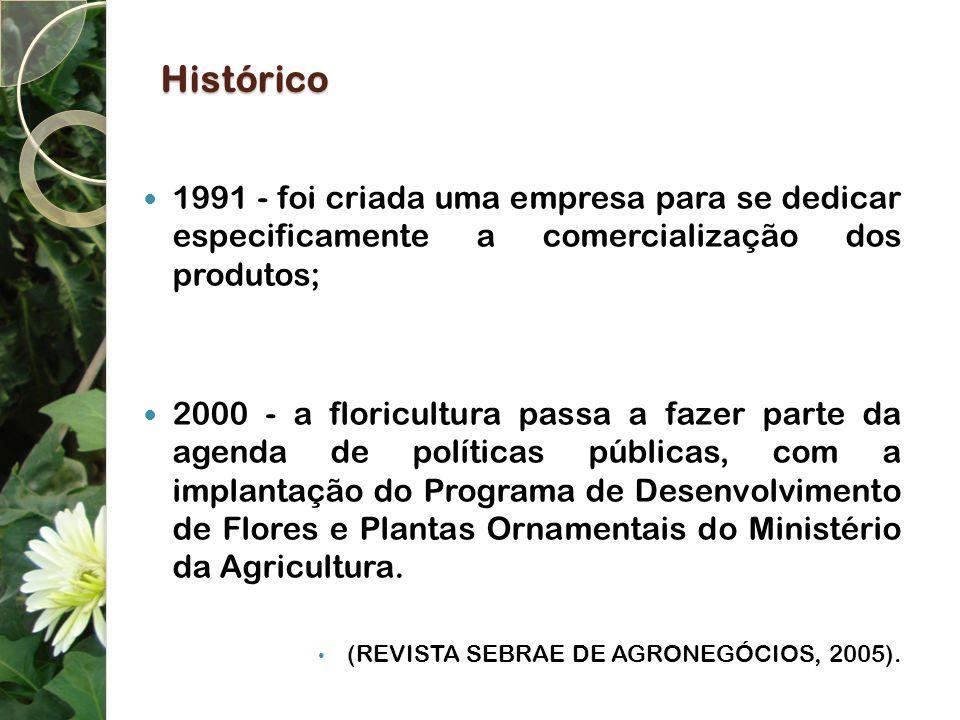Histórico 1991 - foi criada uma empresa para se dedicar especificamente a comercialização dos produtos;