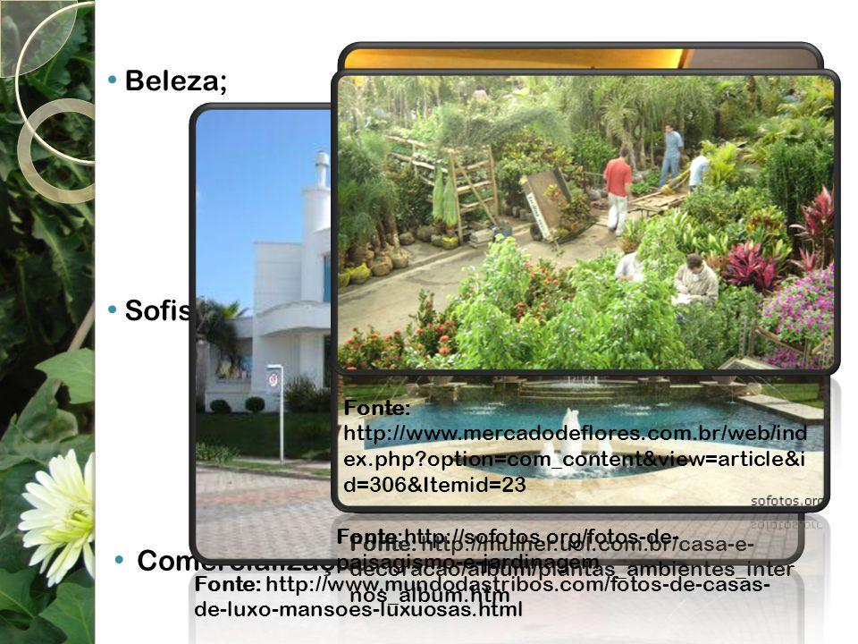 Beleza; Sofisticação; Fonte: http://www.mercadodeflores.com.br/web/index.php option=com_content&view=article&id=306&Itemid=23.