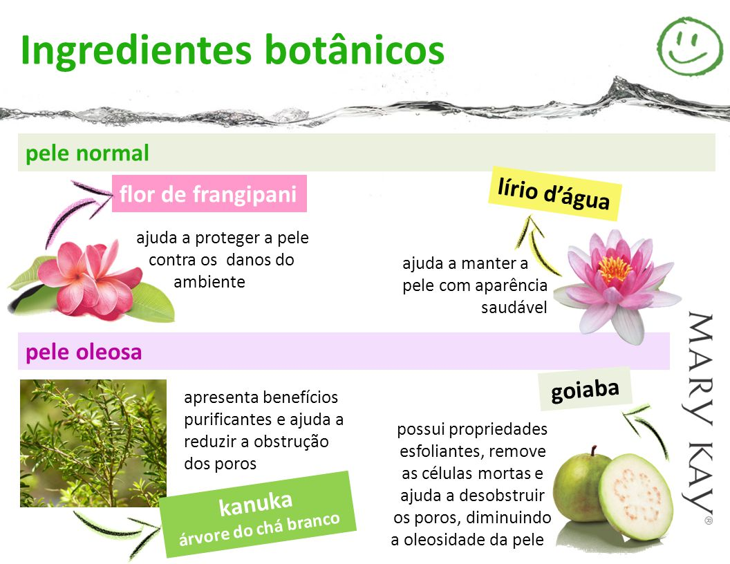 Ingredientes botânicos
