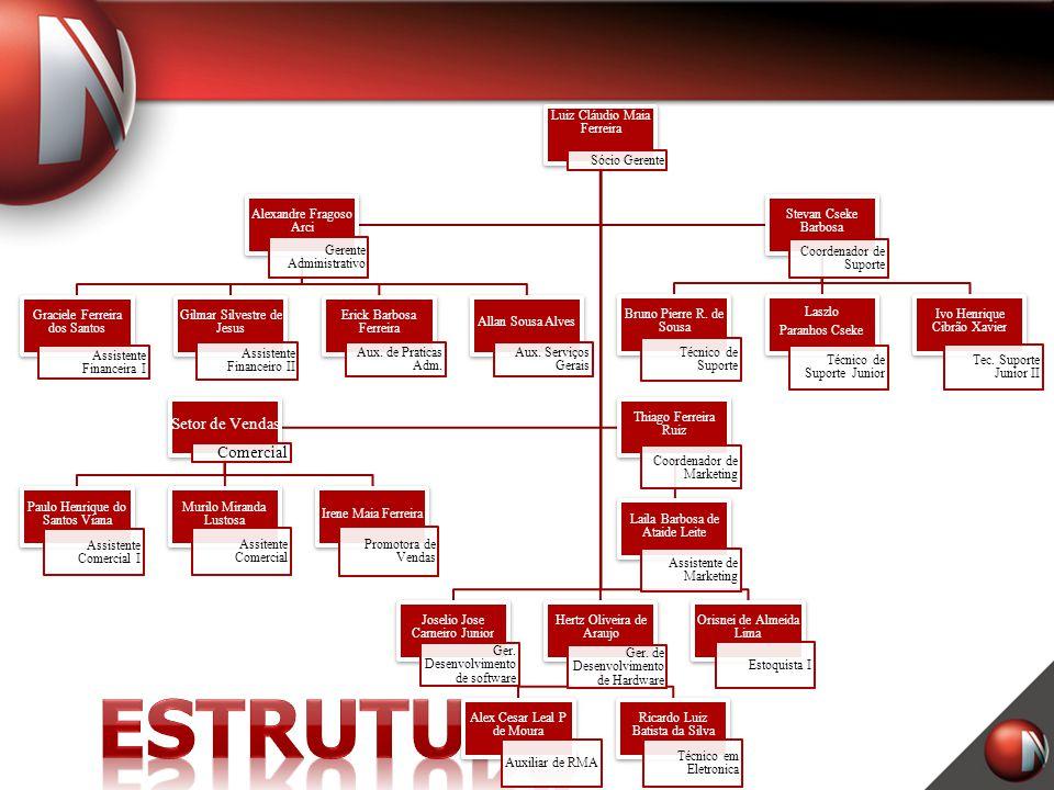 Estrutura Setor de Vendas Comercial Luiz Cláudio Maia Ferreira