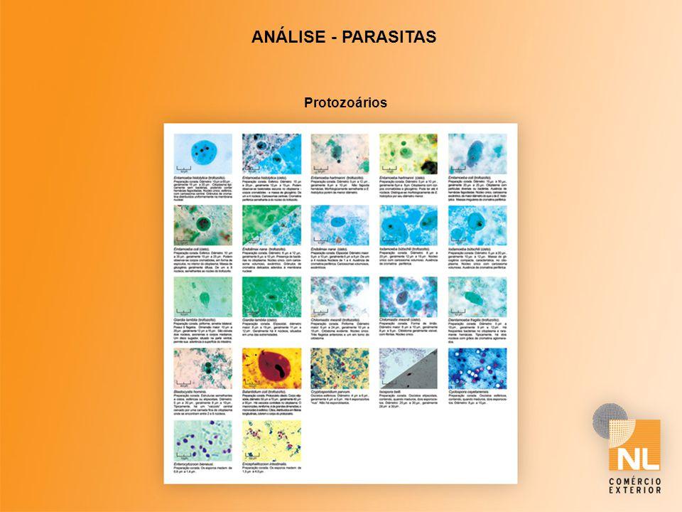 ANÁLISE - PARASITAS Protozoários