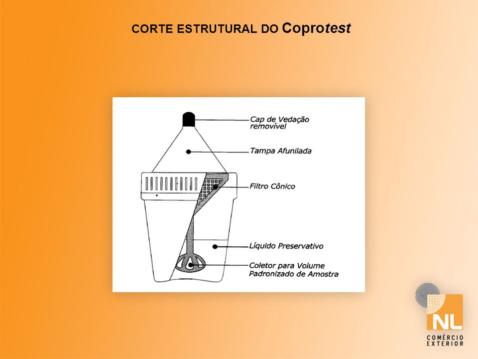 CORTE ESTRUTURAL DO Coprotest