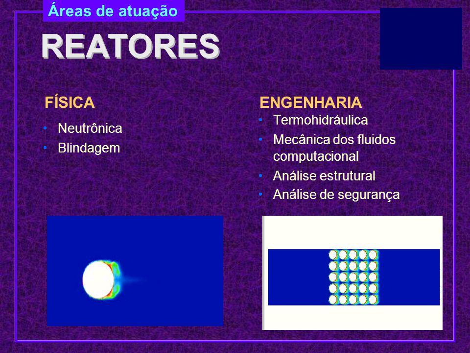 REATORES Áreas de atuação FÍSICA ENGENHARIA Termohidráulica Neutrônica