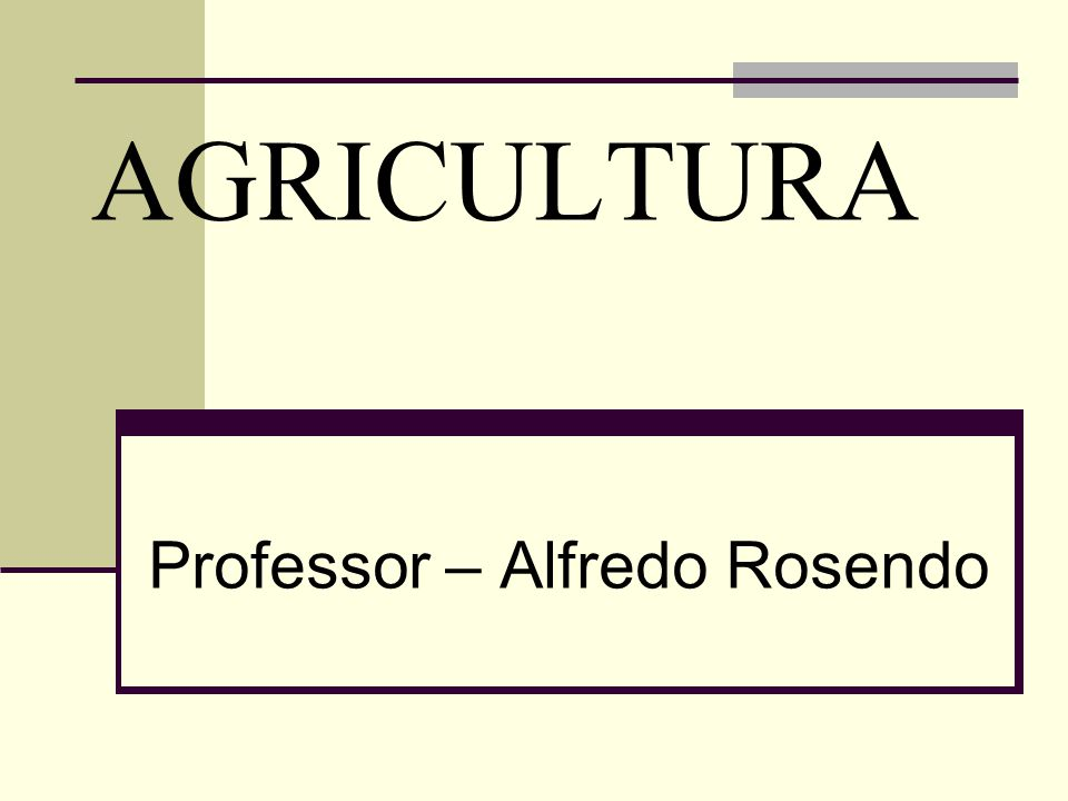 Professor – Alfredo Rosendo
