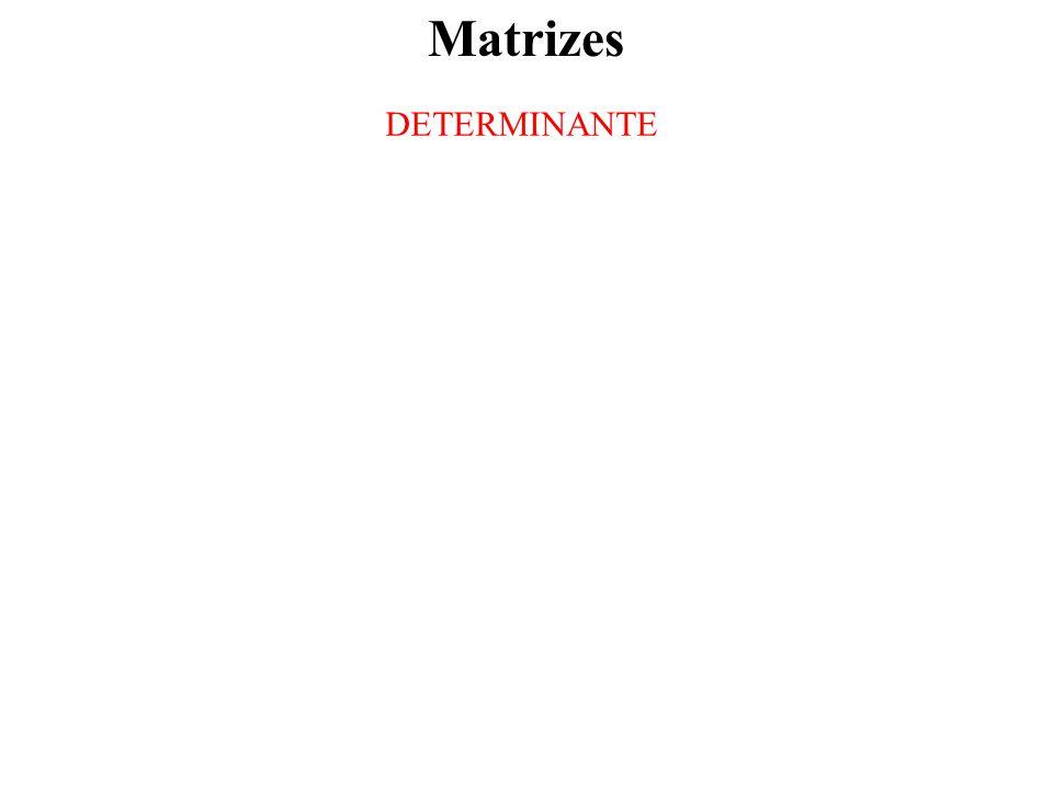 Matrizes DETERMINANTE