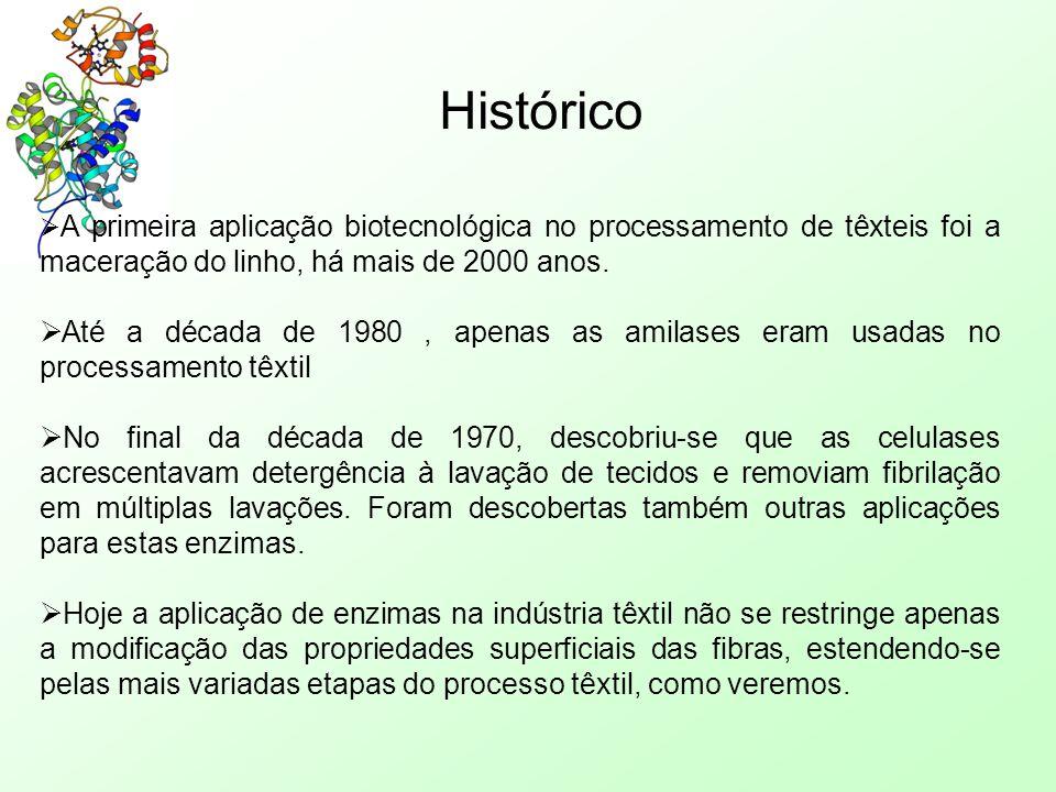Histórico A primeira aplicação biotecnológica no processamento de têxteis foi a maceração do linho, há mais de 2000 anos.