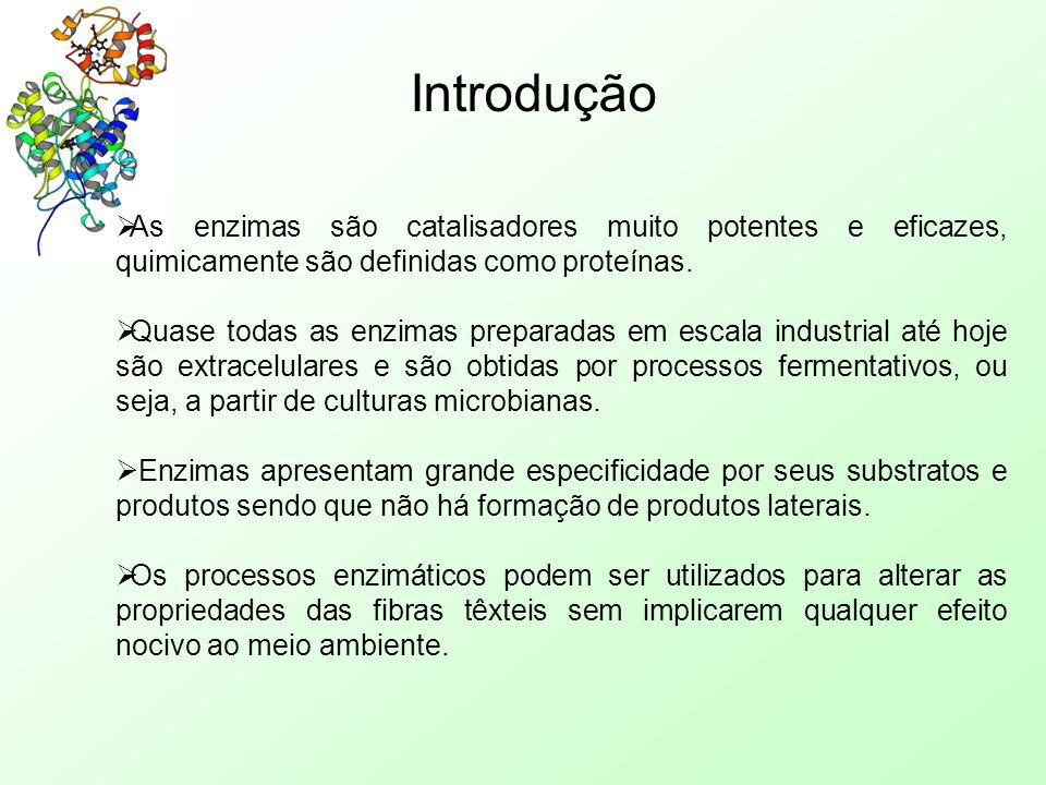 Introdução As enzimas são catalisadores muito potentes e eficazes, quimicamente são definidas como proteínas.