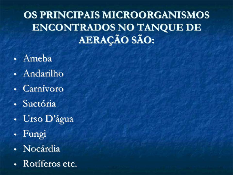 OS PRINCIPAIS MICROORGANISMOS ENCONTRADOS NO TANQUE DE AERAÇÃO SÃO: