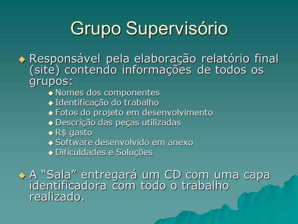 Grupo Supervisório Responsável pela elaboração relatório final (site) contendo informações de todos os grupos: