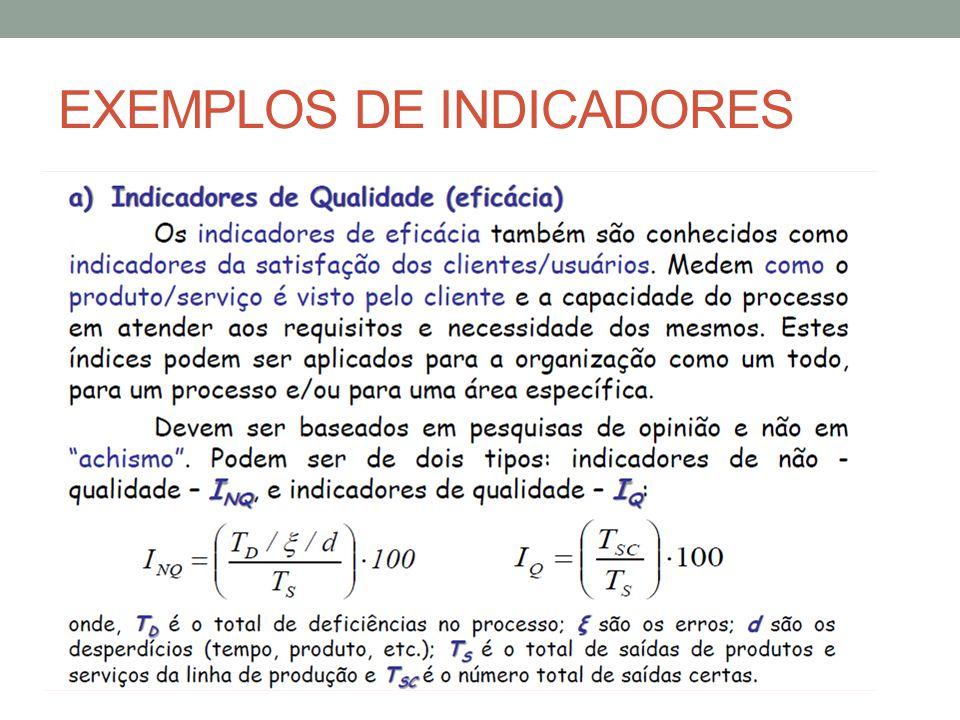 EXEMPLOS DE INDICADORES