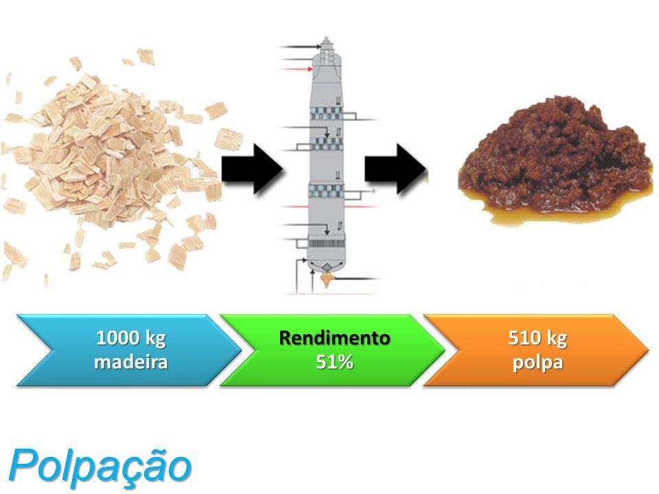 1000 kg madeira Rendimento 51% 510 kg polpa Polpação