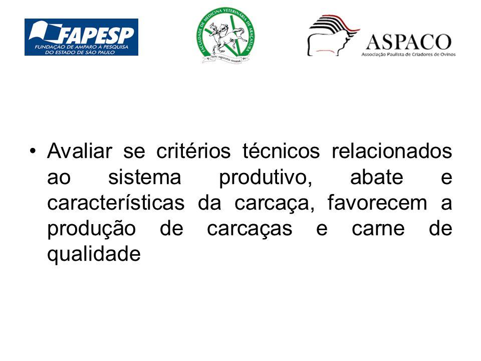 Avaliar se critérios técnicos relacionados ao sistema produtivo, abate e características da carcaça, favorecem a produção de carcaças e carne de qualidade