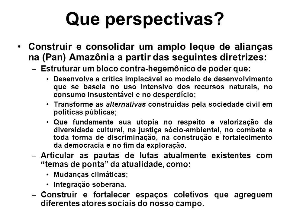 Que perspectivas Construir e consolidar um amplo leque de alianças na (Pan) Amazônia a partir das seguintes diretrizes: