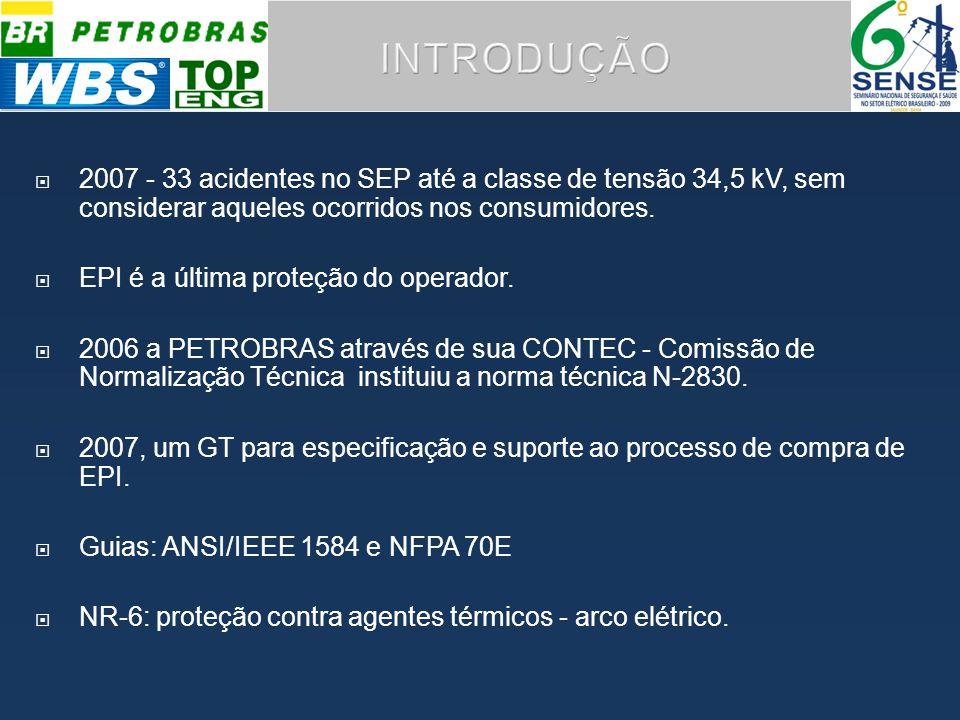 INTRODUÇÃO 2007 - 33 acidentes no SEP até a classe de tensão 34,5 kV, sem considerar aqueles ocorridos nos consumidores.