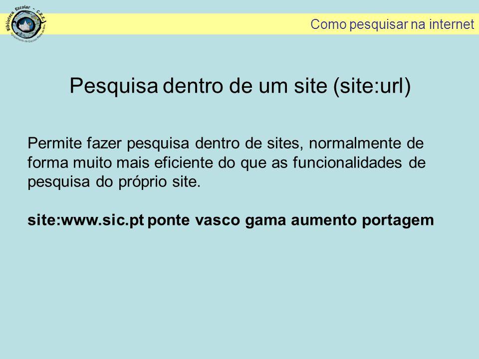 Pesquisa dentro de um site (site:url)