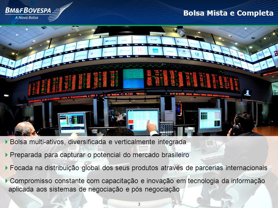 Bolsa multi-ativos, diversificada e verticalmente integrada