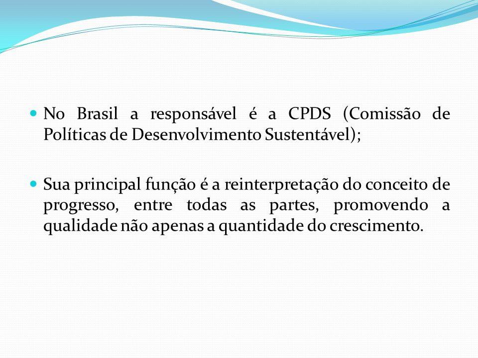 No Brasil a responsável é a CPDS (Comissão de Políticas de Desenvolvimento Sustentável);