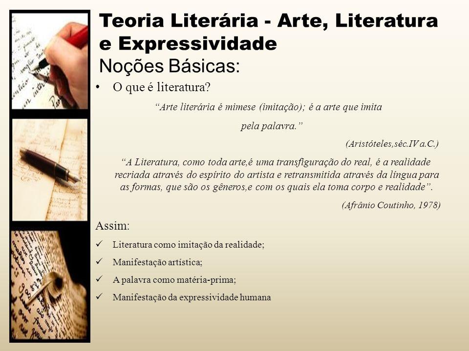 Teoria Literária - Arte, Literatura e Expressividade Noções Básicas: