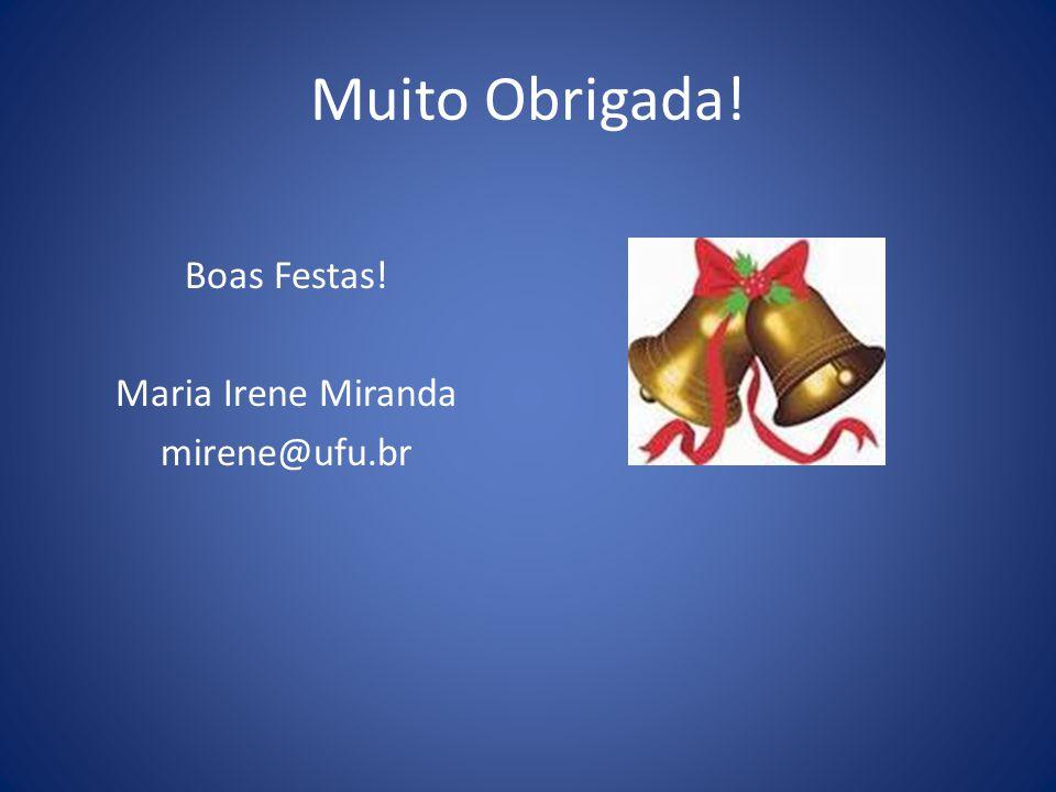 Boas Festas! Maria Irene Miranda mirene@ufu.br