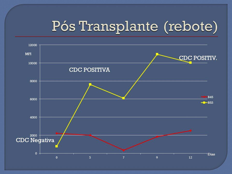 Pós Transplante (rebote)