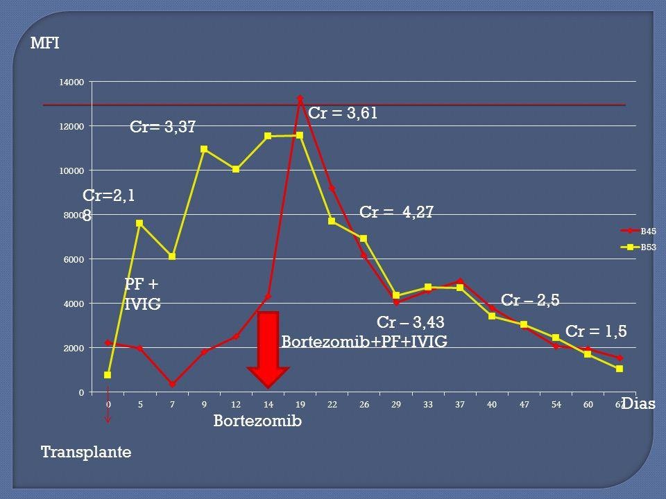 MFI Cr= 3,37 Cr=2,18 PF + IVIG Cr = 1,5 Bortezomib+PF+IVIG Bortezomib Transplante