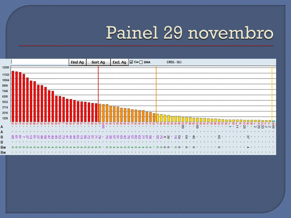Painel 29 novembro