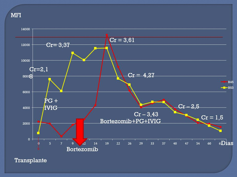 MFI Cr= 3,37 Cr=2,18 PG + IVIG Cr = 1,5 Bortezomib+PG+IVIG Bortezomib Transplante