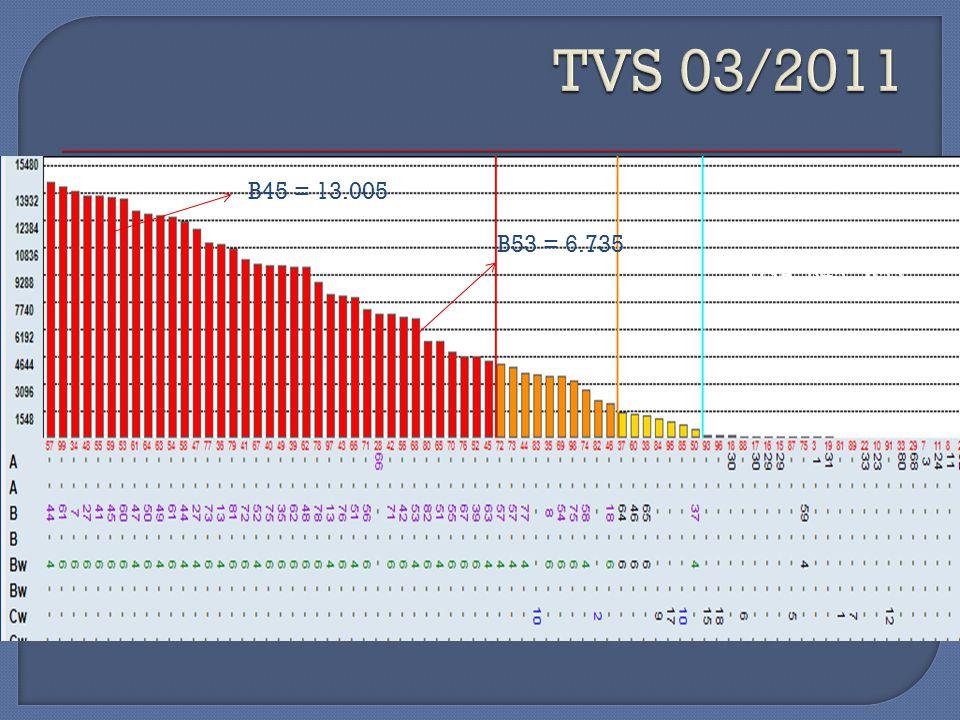 TVS 03/2011 B45 = 13.005 B53 = 6.735 DSA B45 B53