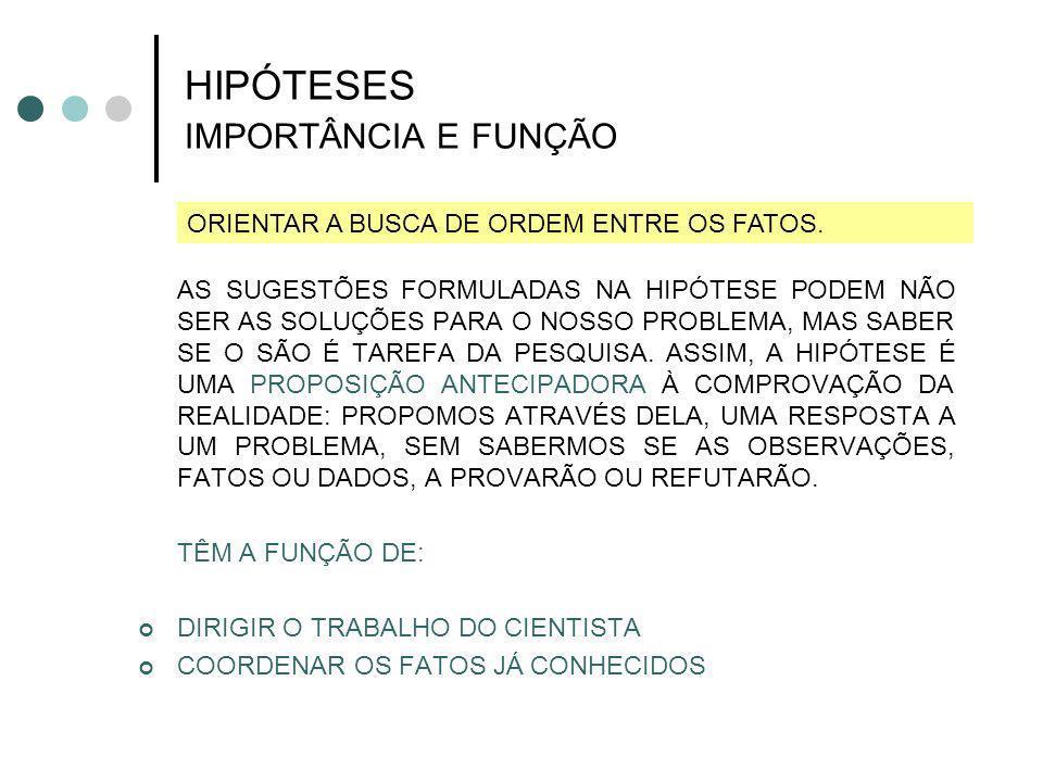 HIPÓTESES IMPORTÂNCIA E FUNÇÃO