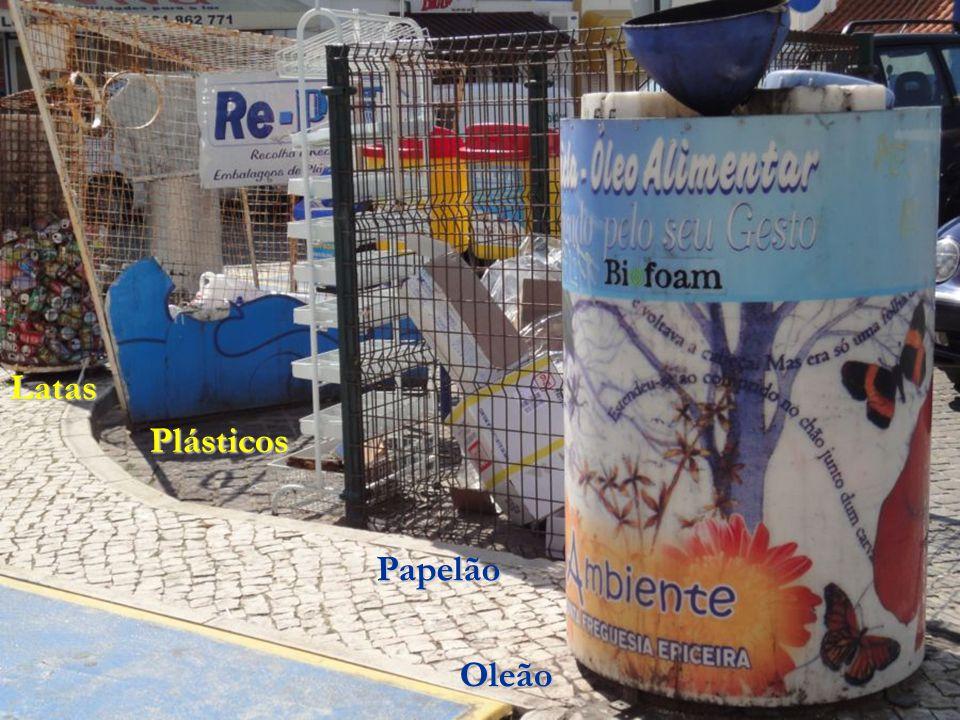 Latas Plásticos Papelão Oleão