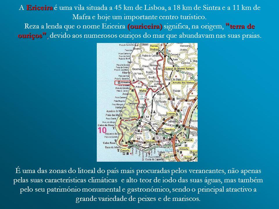 A Ericeira é uma vila situada a 45 km de Lisboa, a 18 km de Sintra e a 11 km de Mafra e hoje um importante centro turístico. Reza a lenda que o nome Ericeira (ouriceira) significa, na origem, terra de ouriços , devido aos numerosos ouriços do mar que abundavam nas suas praias.