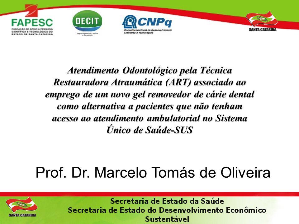 Prof. Dr. Marcelo Tomás de Oliveira