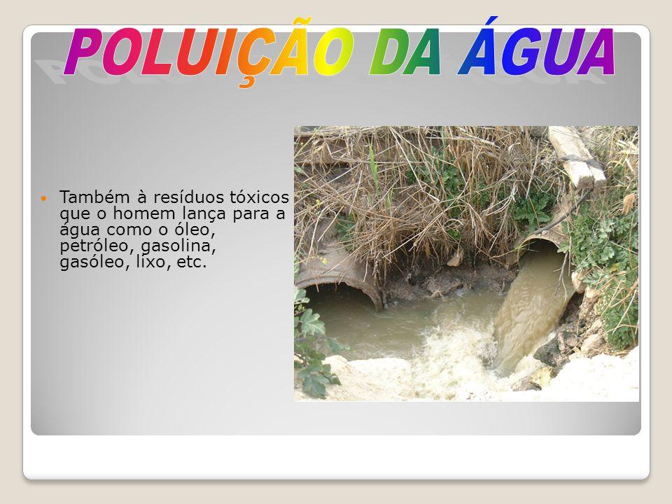 POLUIÇÃO DA ÁGUA Também à resíduos tóxicos que o homem lança para a água como o óleo, petróleo, gasolina, gasóleo, lixo, etc.
