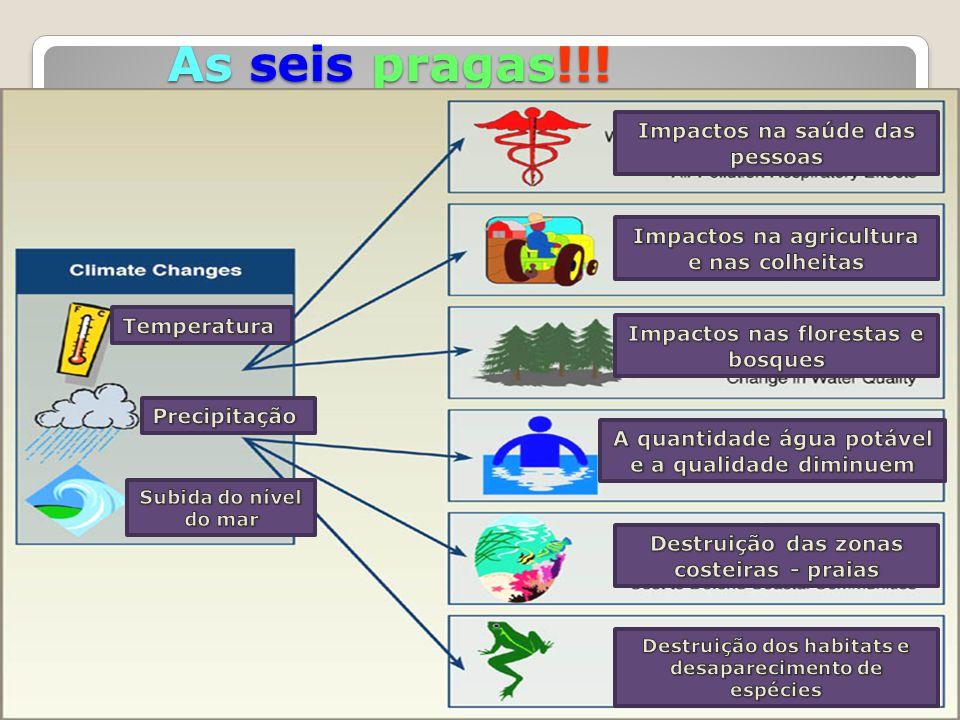 As seis pragas!!! Impactos na saúde das pessoas