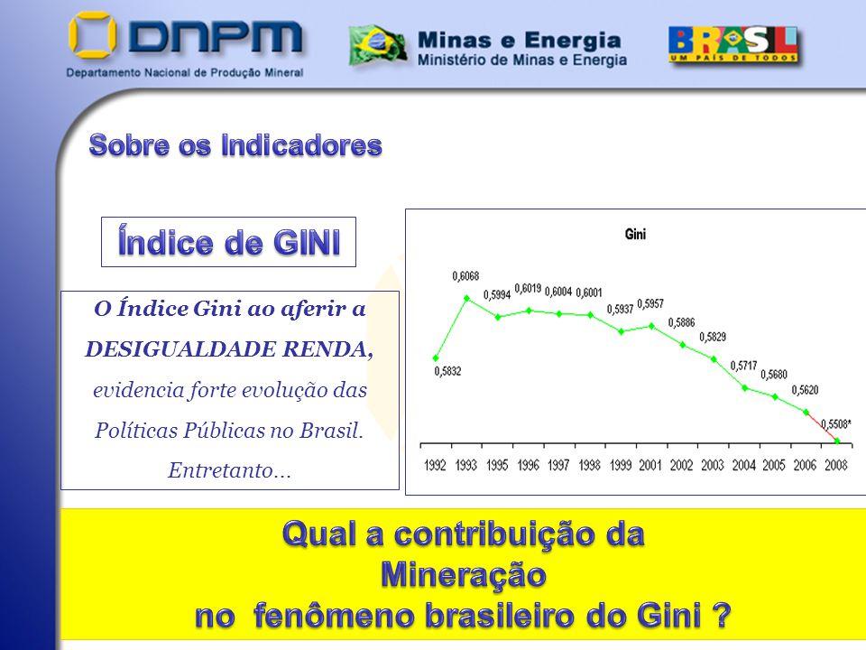 O Índice Gini ao aferir a no fenômeno brasileiro do Gini