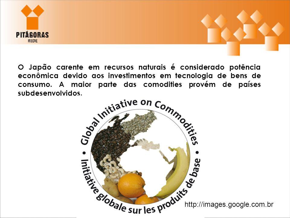 O Japão carente em recursos naturais é considerado potência econômica devido aos investimentos em tecnologia de bens de consumo. A maior parte das comodities provém de países subdesenvolvidos.