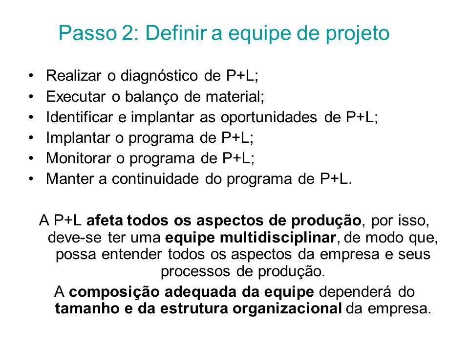 Passo 2: Definir a equipe de projeto