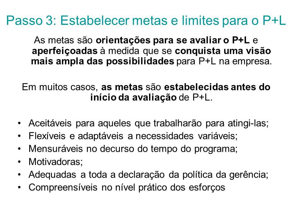 Passo 3: Estabelecer metas e limites para o P+L