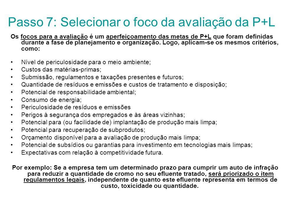 Passo 7: Selecionar o foco da avaliação da P+L