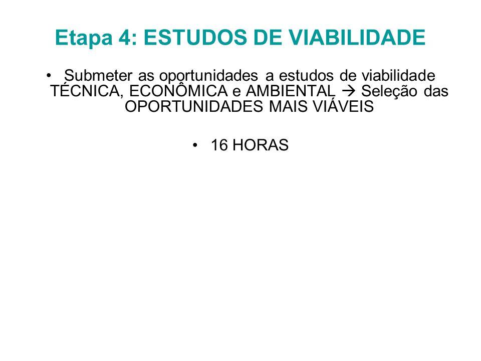 Etapa 4: ESTUDOS DE VIABILIDADE