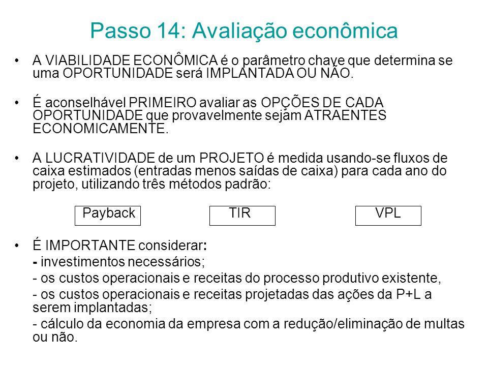 Passo 14: Avaliação econômica