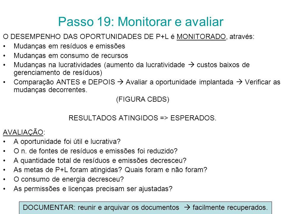 Passo 19: Monitorar e avaliar